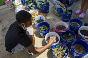 Summer STEAM Camp student learns about agriculture.